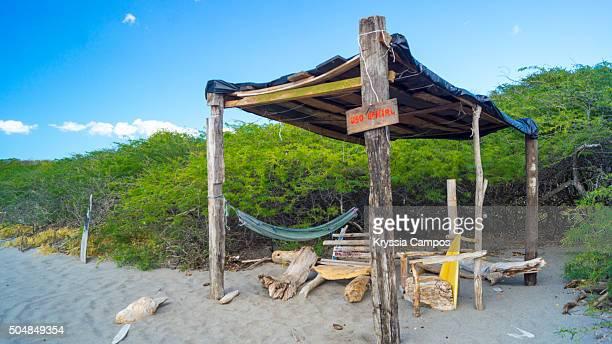rustic spot at playa naranjo, santa rosa national park, guanacaste, costa rica - parque nacional de santa rosa fotografías e imágenes de stock