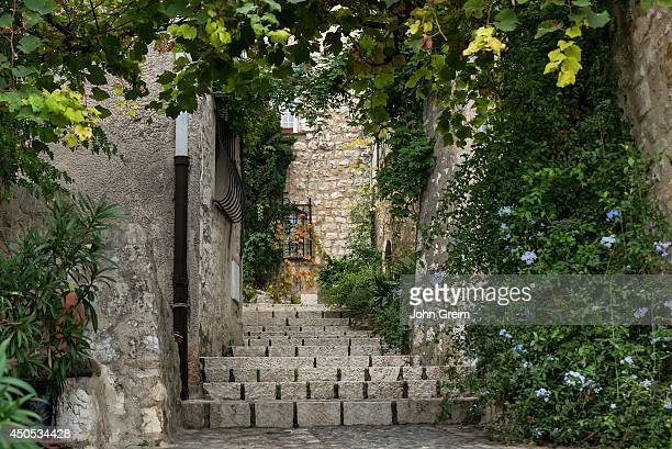 Rustic stone steps and plants in the medieval village.