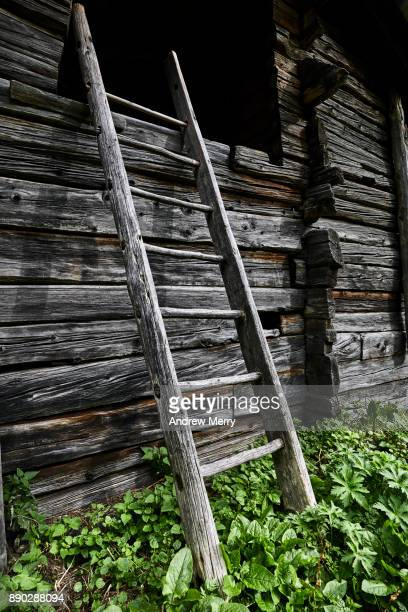 Rustic timber ladder and wooden hut, barn, cabin in Swiss Alps