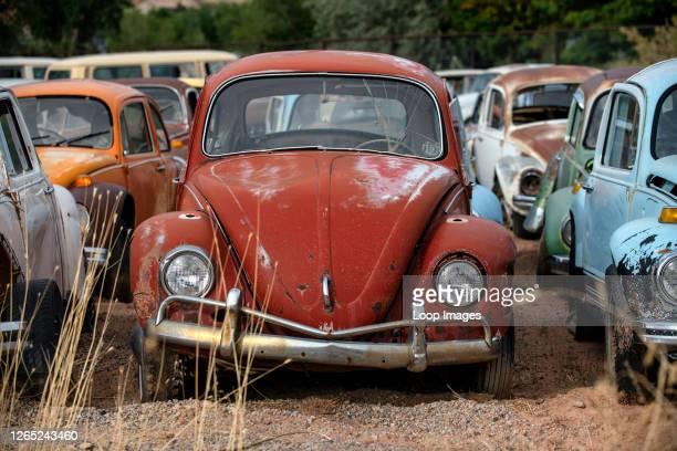 Rusting Volkswagen Beetles in a scrapyard in Moab in Utah.