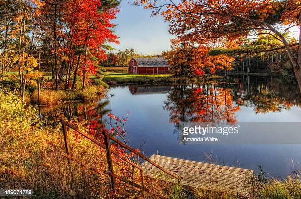 Rusty steps lead down to a small, floating dock on a still, mirror-like lake which is surrounded by dazzling fall foliage with a red barn nestled in...