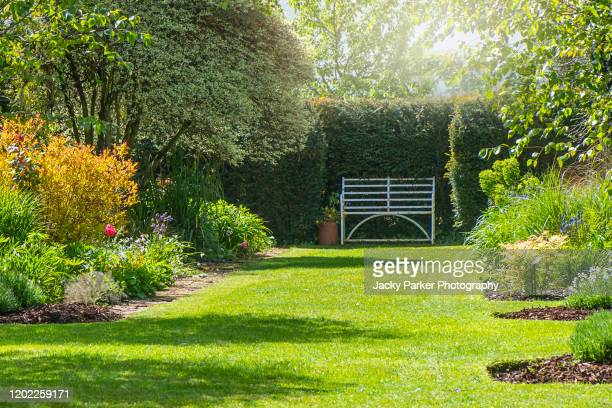 a rusty wrought iron white bench on the grass in a summer, sunny english garden - domestic garden stock pictures, royalty-free photos & images