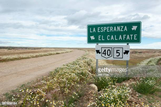 Ruta 40 road sign in southern Argentina