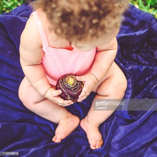 rutabaga and baby - rutabaga stock pictures, royalty-free photos & images