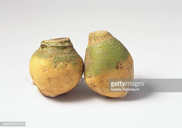 rutabagas - rutabaga stock pictures, royalty-free photos & images