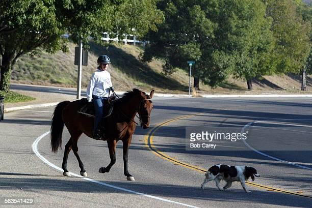 Ruth Means is a resident and avid equestrian in the Santa Rosa Valley who lobbies for more understanding from drivers who now crowd the Valley She...