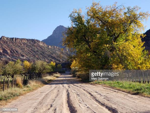 rutted dirt road stock photos and pictures getty images