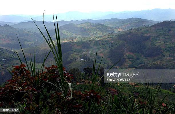 Rwanda An amazing country landlocked in the heart of Africa also called the 'Country of one thousand hills' The Batwa pygmies in the north of the...