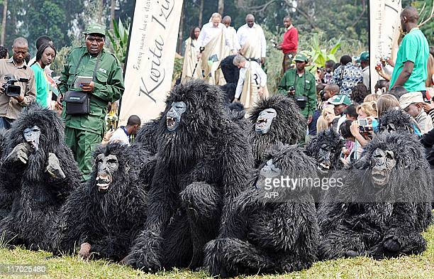 Rwandan children perform in baby gorilla costumes for approximately 20000 Rwandan villagers government officials and tourists as part of Rwanda's 7th...