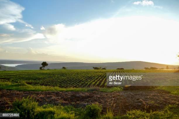 Rwandan Sunset