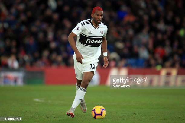Ryan Babel of Fulham during the Premier League match between Crystal Palace and Fulham FC at Selhurst Park on February 02 2019 in London United...