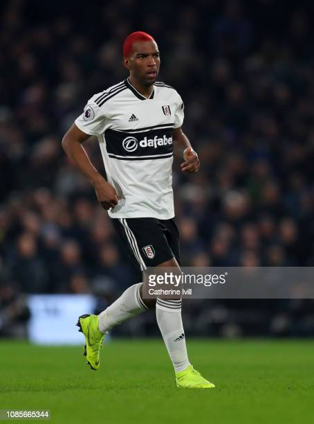 Ryan Babel of Fulham during the Premier League match between Fulham FC and Tottenham Hotspur at Craven Cottage on January 20 2019 in London United...