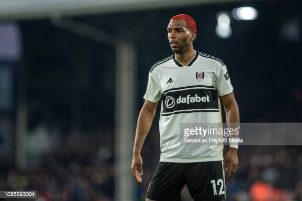 Ryan Babel of Fulham FC looks on during the Premier League match between Fulham FC and Tottenham Hotspur at Craven Cottage on January 20 2019 in...