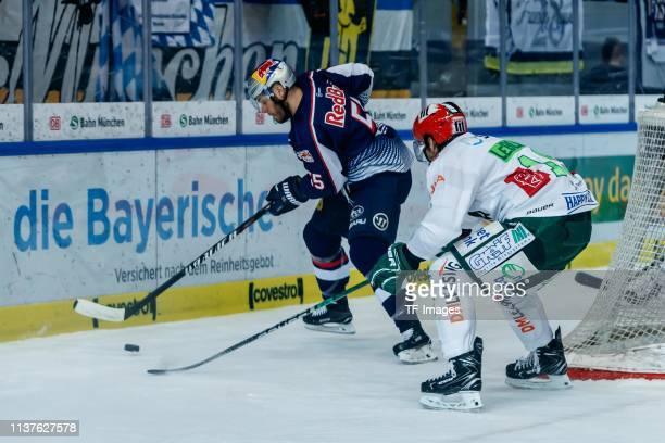 Ryan Button of EHC Red Bull Muenchen and Adam Payerl of Augsburger Panther battle for the ball during the seventh game of the DEL PlayOffs Semi Final...