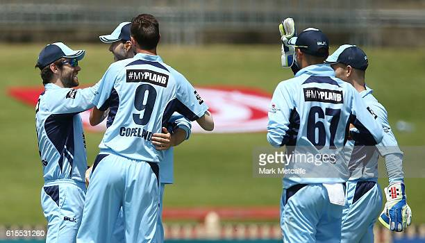 Ryan Carters of the Blues celebrates with team mates after taking a catch to dismiss Adam Voges of the Warriors during the Matador BBQs One Day Cup...