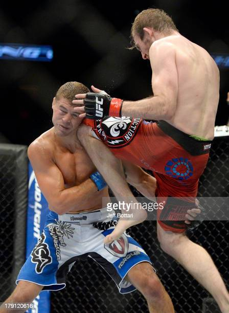 Ryan Couture lands a knee to the head of Al Iaquinta in their UFC lightweight bout at BMO Harris Bradley Center on August 31 2013 in Milwaukee...