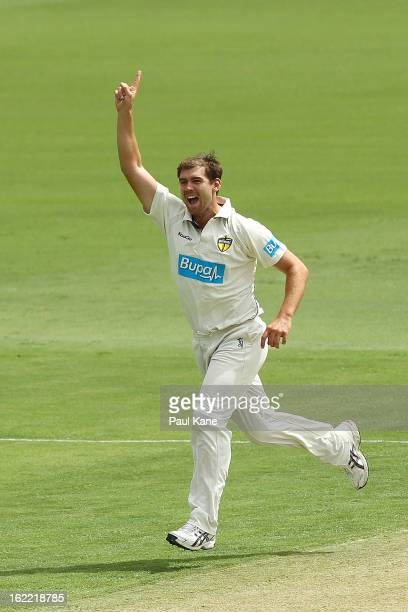 Ryan Duffield of the Warriors celebrates dismissing Ben Dunk of the Tigers during day one of Sheffield Shield match between the Western Australia...