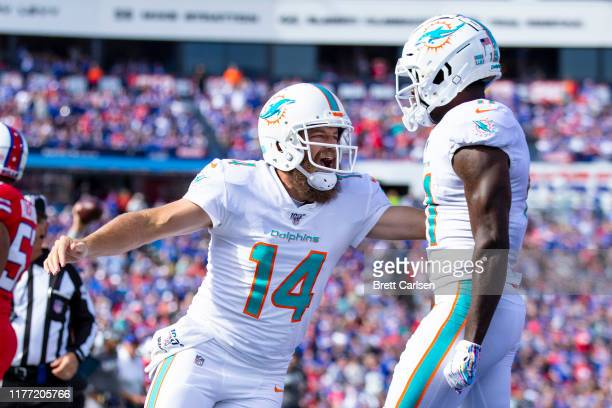 Ryan Fitzpatrick congratulates teammate DeVante Parker of the Miami Dolphins after the pair connected for a second quarter touchdown pass against the...