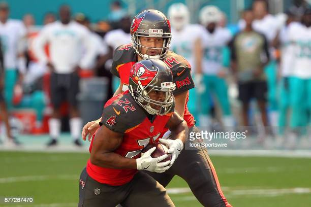 Ryan Fitzpatrick of the Bucs hands the ball off to Doug Martin during game between the Tampa Bay Buccaneers and the Miami Dolphins on Sunday Nov 19...