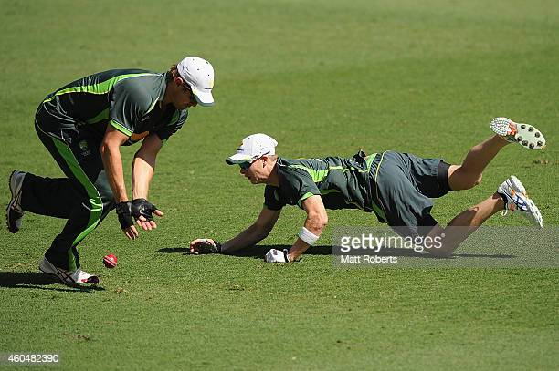 Ryan Harris and Steve Smith field during an Australian training session at The Gabba on December 15 2014 in Brisbane Australia