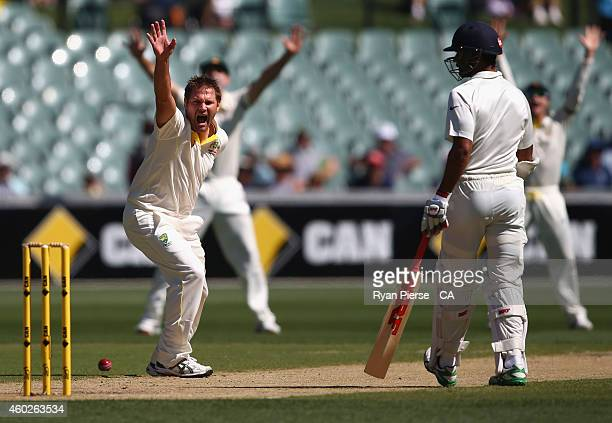 Ryan Harris of Australia appeals for a wicket during day three of the First Test match between Australia and India at Adelaide Oval on December 11...