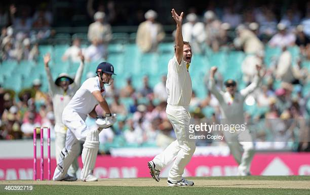 Ryan Harris of Australia successfully appeals for the wicket of England captain Alastair Cook during day two of the Fifth Ashes Test match between...