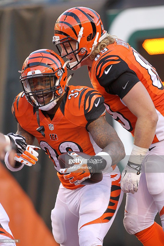 Ryan Hewitt #89 of the Cincinnati Bengals congratulates Jeremy Hill #32 of the Cincinnati Bengals after scoring a touchdown during the fourth quarter of the game against the Jacksonville Jaguars at Paul Brown Stadium on November 2, 2014 in Cincinnati, Ohio. Cincinnati defeated Jacksonville 33-23.