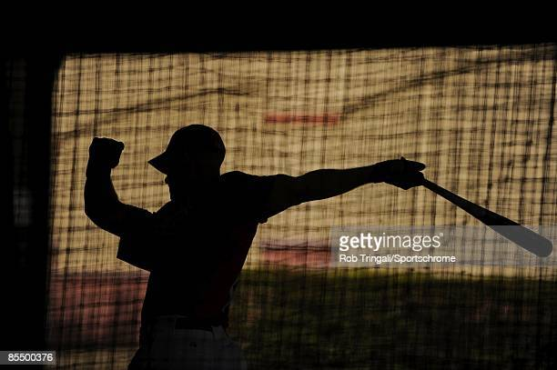 Ryan Ludwick of the St Louis Cardinals takes batting practice before a game against the Washington Nationals during a spring training game at Roger...