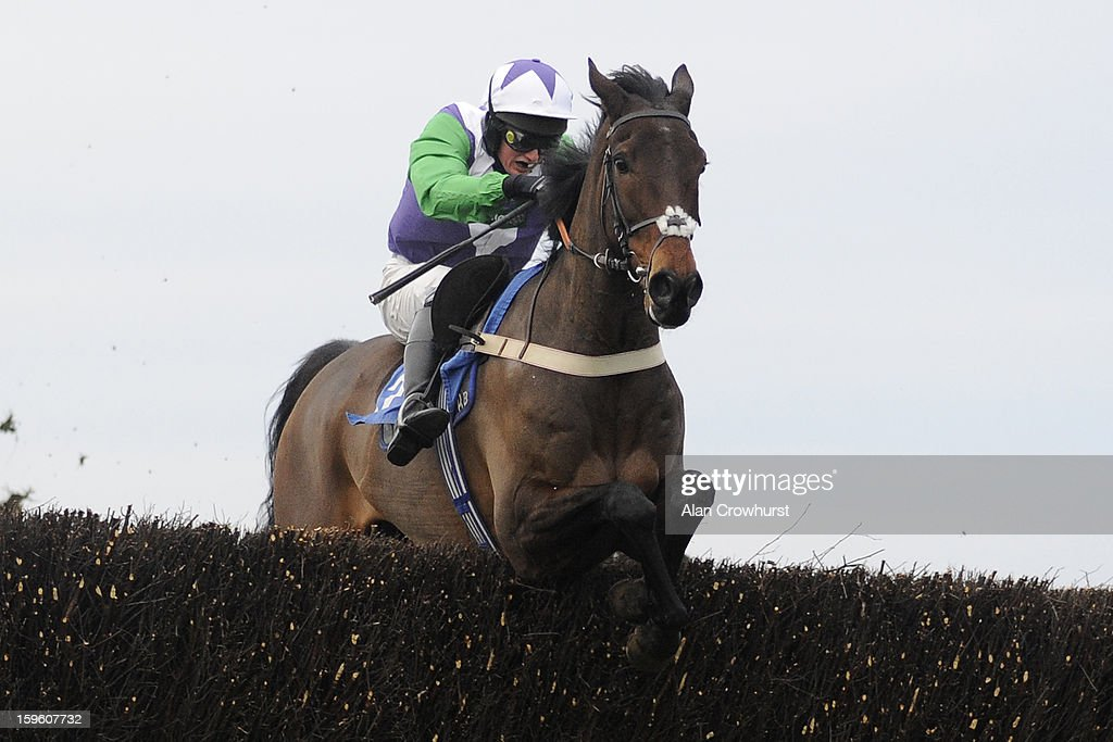 Ryan Mahon riding Opening Batsman clear the last to win The Higos Insurance Services Street Novices' Limited Handicap Steeple Chase at Wincanton racecourse on January 17, 2013 in Wincanton, England.