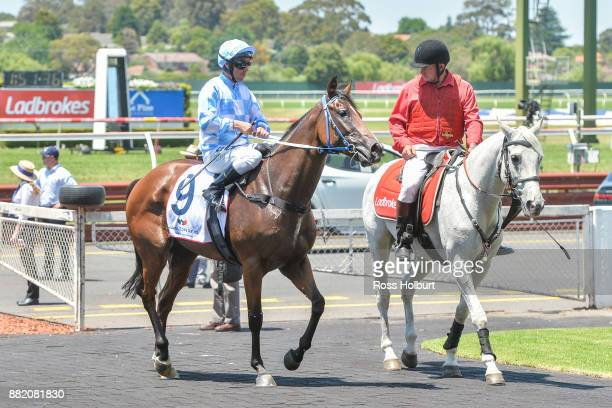 Ryan Maloney returns to the mounting yard on Whistler Bowl after winning the Hamilton Reid Chartered Accountants Plate at Ladbrokes Park Hillside...