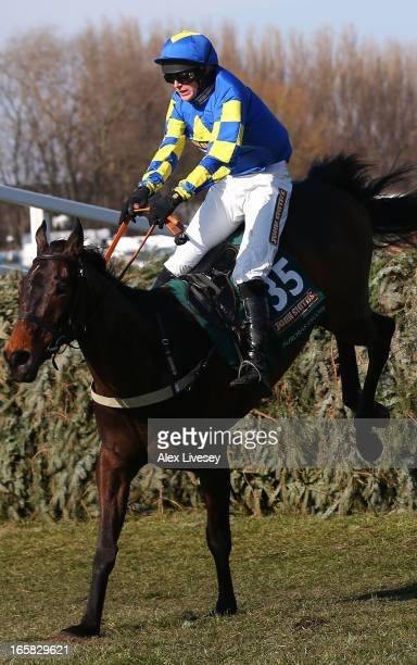 Ryan Mania riding Auroras Encore clears the last to win the John Smiths Grand National Steeple Chase at Aintree Racecourse on April 6, 2013 in...