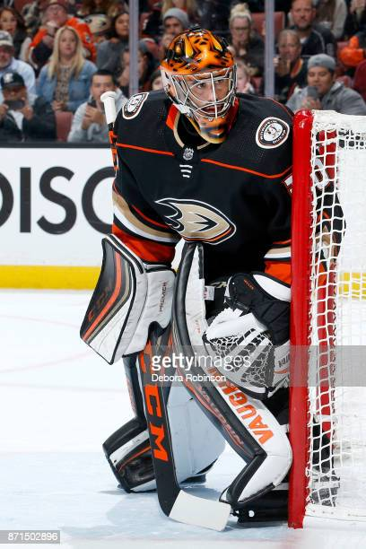Ryan Miller of the Anaheim Ducks holds the crease during the game against the Los Angeles Kings on November 7 2017 at Honda Center in Anaheim...