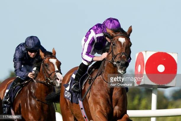 Ryan Moore riding Magical win The Qipco Irish Champion Stakes at Leopardstown Racecourse on Irish Champion Stakes Day on September 14, 2019 in...