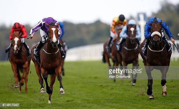 Ryan Moore riding Minding win The Queen Elizabeth Stakes at Ascot Racecourse on October 15 2016 in Ascot England