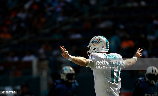 Ryan Tannehill of the Miami Dolphins calls a play during a game against the Tennessee Titans on October 9 2016 in Miami Gardens Florida