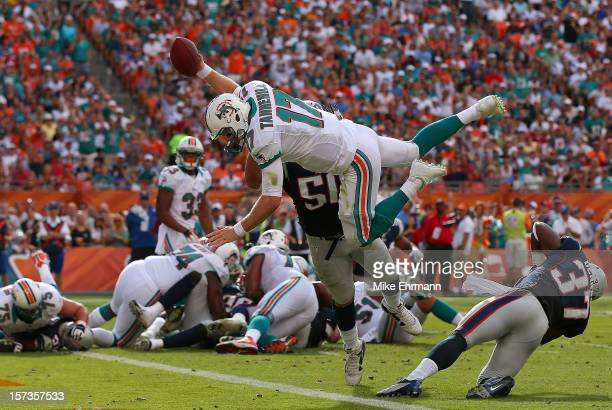 Ryan Tannehill of the Miami Dolphins dives for a touchdown during a game against the New England Patriots at Sun Life Stadium on December 2 2012 in...
