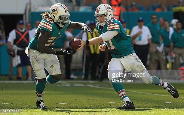 Ryan Tannehill of the Miami Dolphins hands off to Jay Ajayi during a game against the Buffalo Bills on October 23 2016 in Miami Gardens Florida