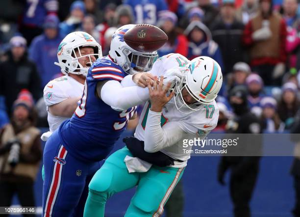 Ryan Tannehill of the Miami Dolphins is hit by Shaq Lawson of the Buffalo Bills and fumbles causing a turnover in the third quarter during NFL game...