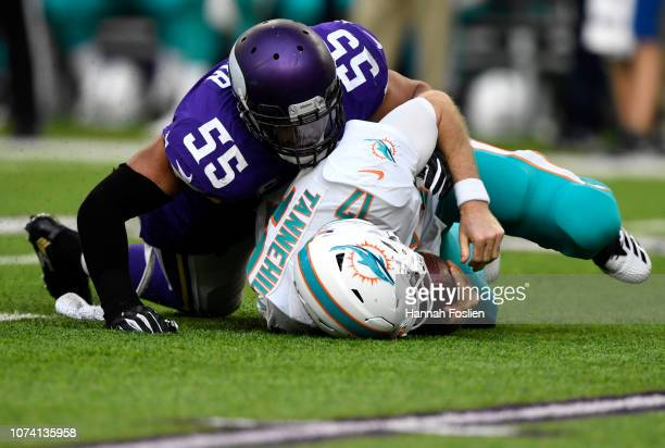 Ryan Tannehill of the Miami Dolphins is sacked with the ball by Anthony Barr of the Minnesota Vikings in the third quarter of the game at US Bank...