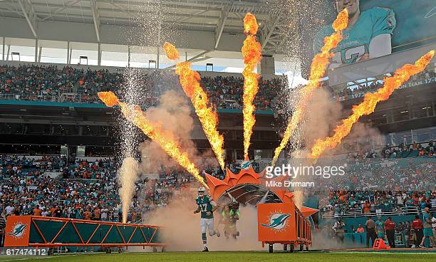 Ryan Tannehill of the Miami Dolphins takes the field during a game against the Buffalo Bills on October 23 2016 in Miami Gardens Florida