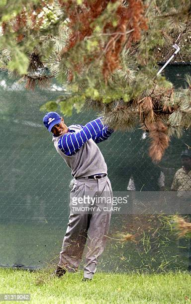 Ryder Cup team member Tiger Woods hits out of the rough on the 18th hole during the Foursome match 17 September at Oakland Hills Country Club in...