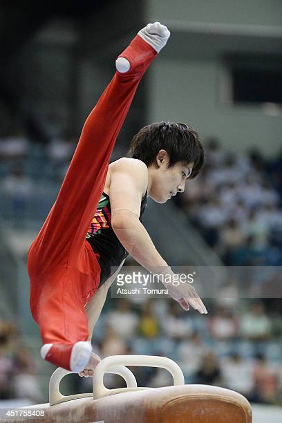 Ryohei Kato of Japan competes on the Pommel Horse during the 68th All Japan Gymnastics Apparatus Championships on July 6 2014 in Chiba Japan