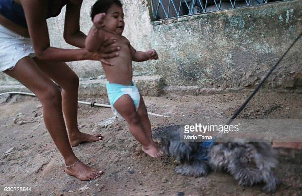 Ryquelme Kauan who was born with microcephaly is held by his mother Avila as she attempts to teach him to walk as a neighborhood dog approaches...