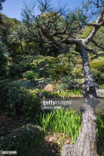 Ryugeji Kanfuen Garden Ryugeji was founded in the early Edo period in 1670 by Priest Nisshin a nephew of Oman who was a concubine of Tokugawa Ieyasu...