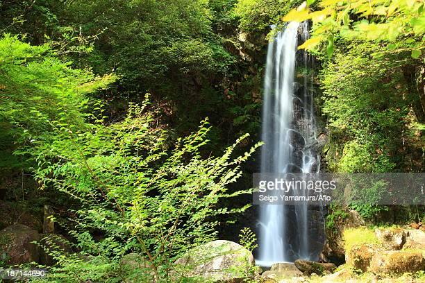 ryugin waterfall, gifu prefecture - 瑞浪市 ストックフォトと画像