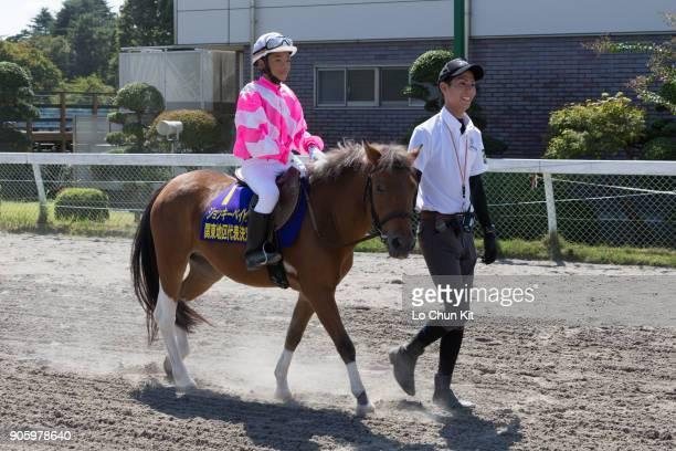 Ryuto Yokoyama celebrates after winning the Jockey babies race at Baji Koen JRA's Equestrian Park on September 23 2015 in Setagaya Tokyo Japan In the...