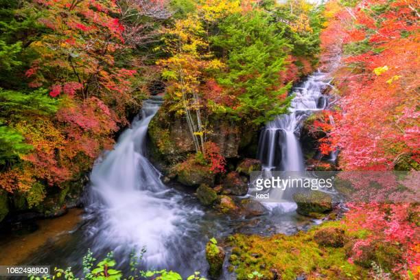 ryuzu falls in autumn, nikko - 栃木県 ストックフォトと画像