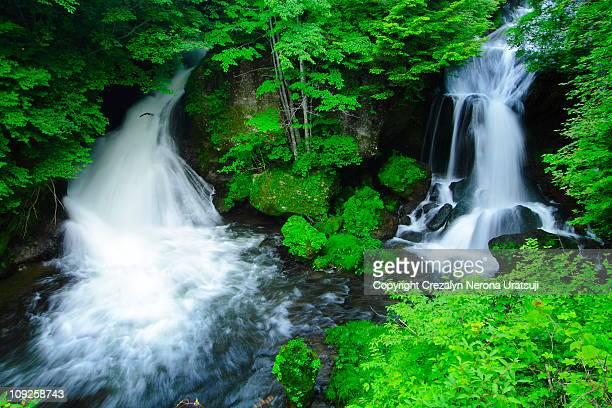 ryuzu falls - 栃木県 ストックフォトと画像