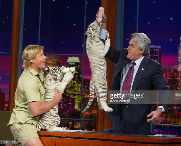 "S ""Crocodile Hunter"" Steve Irwin appears with baby white tigers on ""The Tonight Show with Jay Leno"" at the NBC studios February 4, 2003 in Burbank,..."