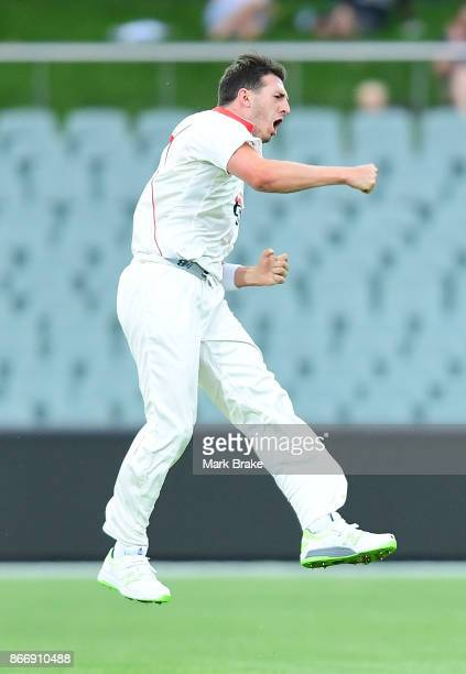 SA's Daniel Worrall gets the wicket of Nic Maddinson during day one of the Sheffield Shield match between South Australia and New South Wales at the...